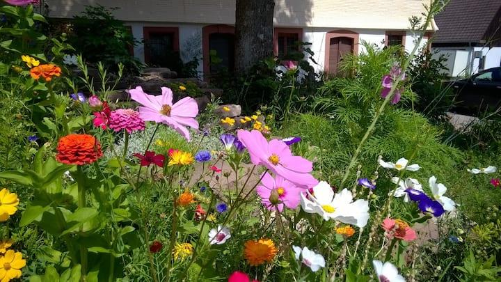 Ferienwohnung am Ziegenhof im Nordschwarzwald