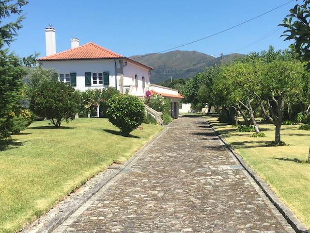 Morgans Ponte de Lima Villa - Cárcua - House