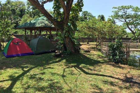 Go Camping By The Pond in Quezon - Pagbilao - Tent