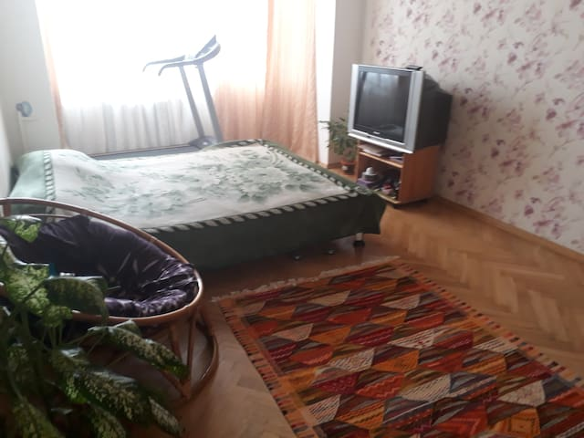 Room in a cozy apartment in Kyiv