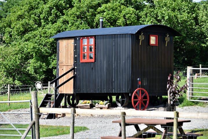 Meadow - Shepherds hut - sleeps 4