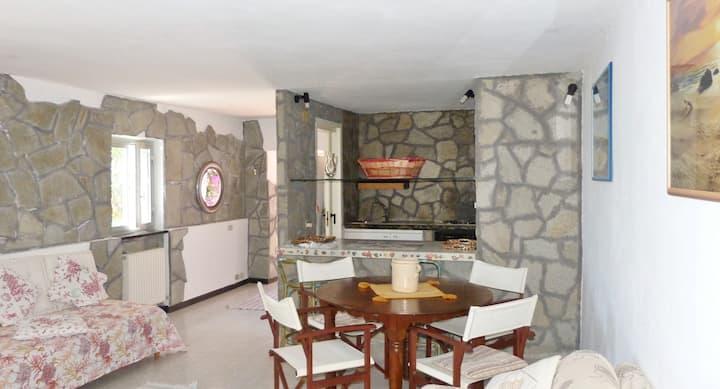 ILA12147 HOUSE ROBERTA