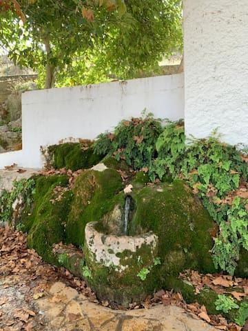 Villa Remedios, alojamiento en Cuevas del Becerro