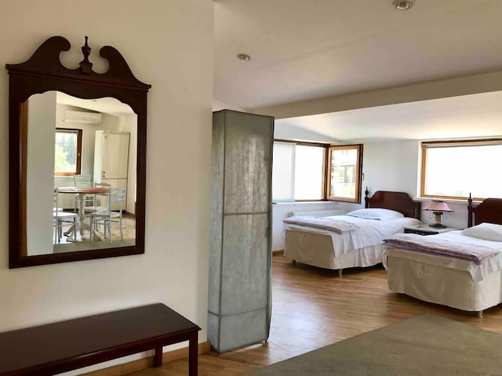 Sunny Tbilisi Apartment