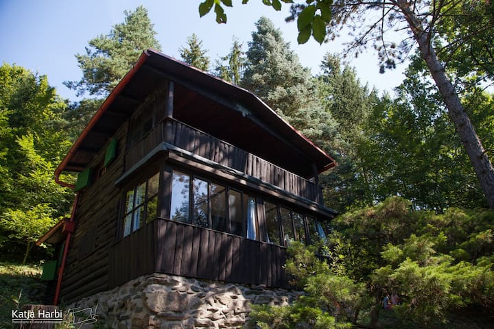 Romantic cabin in woods 30 mins from Prague