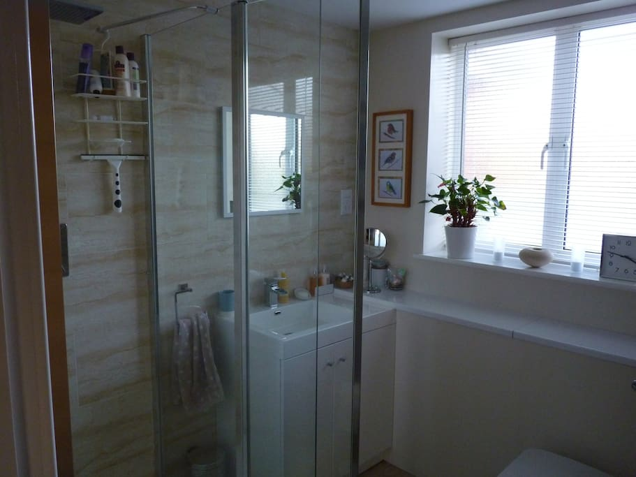 Bathroom - shower and basin