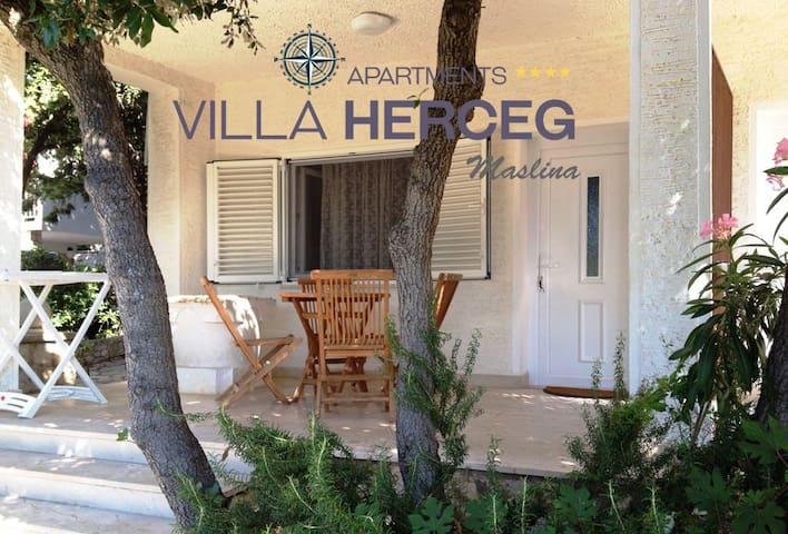 Villa Herceg - Maslina 2+2  First row to the beach - Mandre - Apartamento