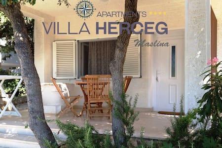Villa Herceg - Maslina 2+2  First row to the beach - Mandre - Apartmen