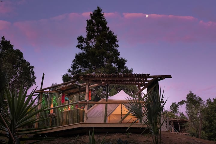 The Luxury Honolulu at Paradise Valley Glamping