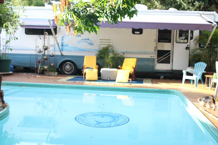 TROPICAL CAMPING WITH YOUR OWN POOL & BAR-B-QUE.
