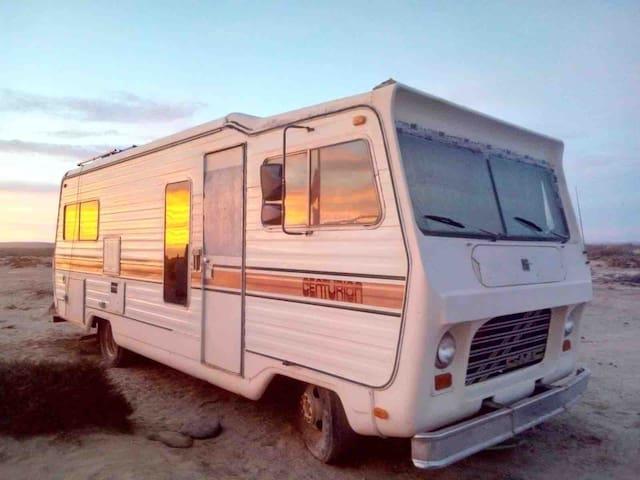 Cerritos surf shack