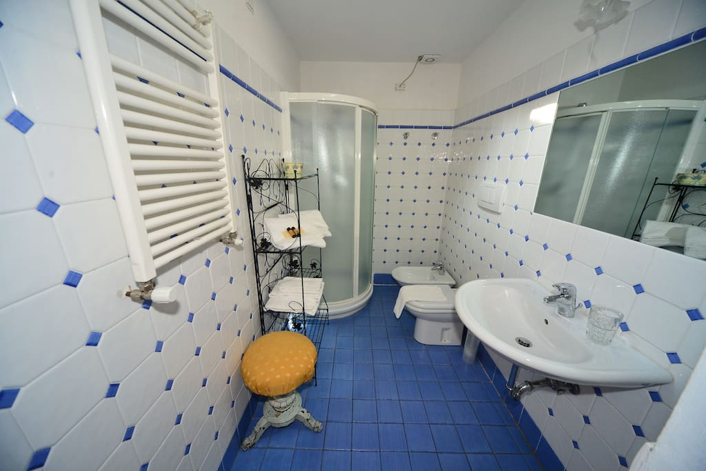 Bagno privato/Private bathroom
