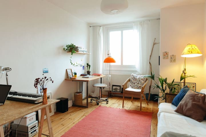 Charming flat in old building, central location