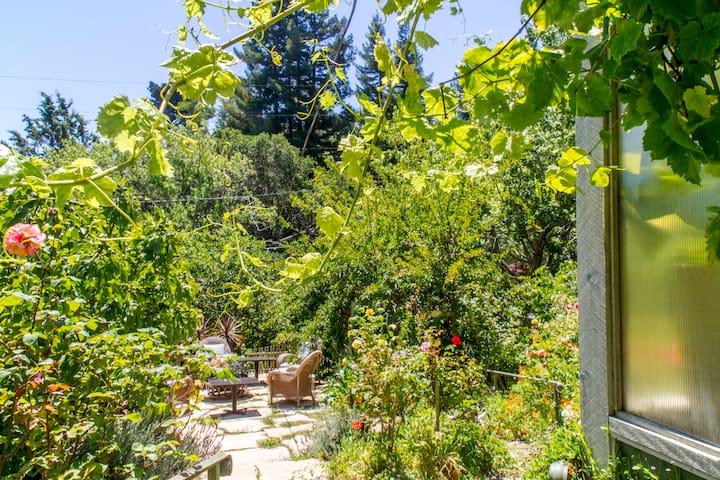 Overlooks garden