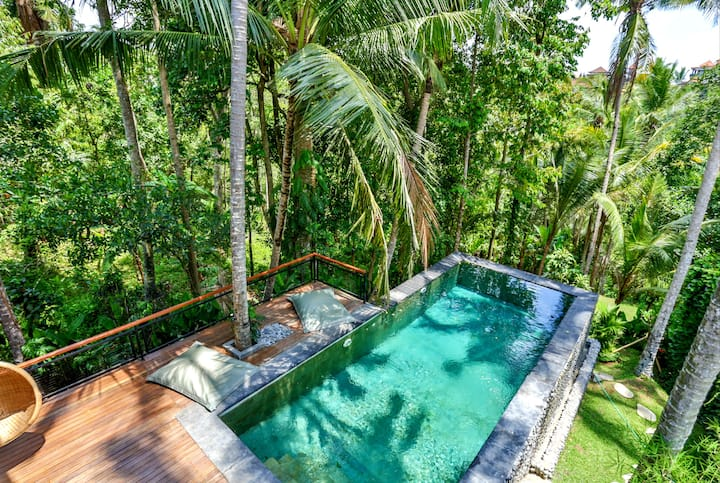 Secluded Jungle Getaway