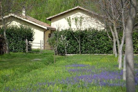 Casa Senape - Ferentillo