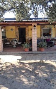 Alquiler casa rural en urb Soto Alberche - Hormigos