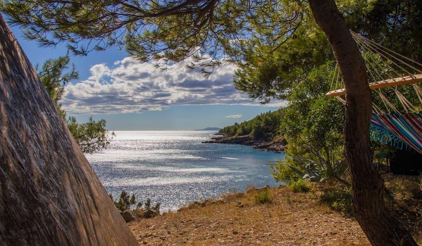Beach Hut Didier (Seaview) + free shuttle