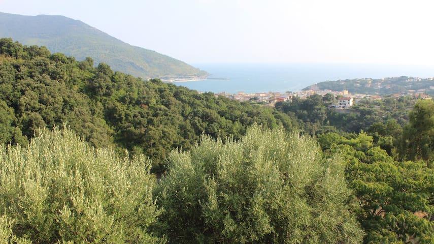 Stanza in villa panoramica