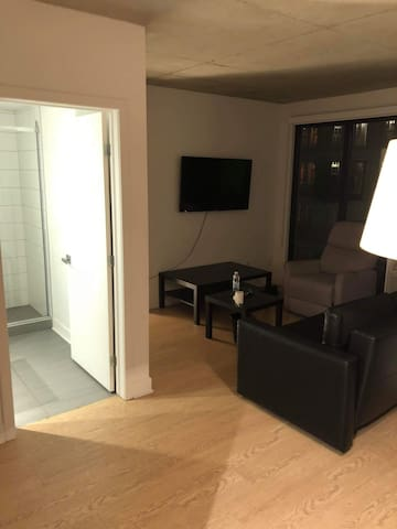Furnished cozy 3 1/2 condo OLD PORT MONTREAL. #625