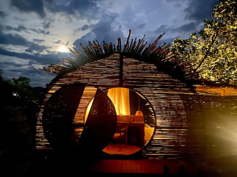 B2 Bird House Luxury Glamping
