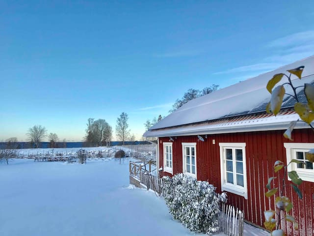 Beautiful winteryime
