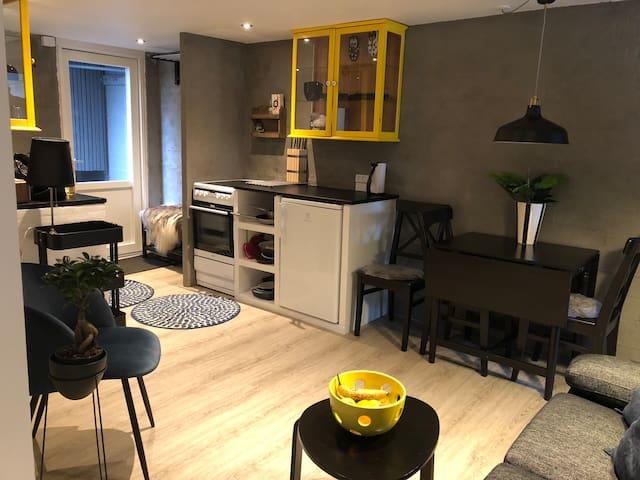 Cosy apartment downtown Tórshavn:)