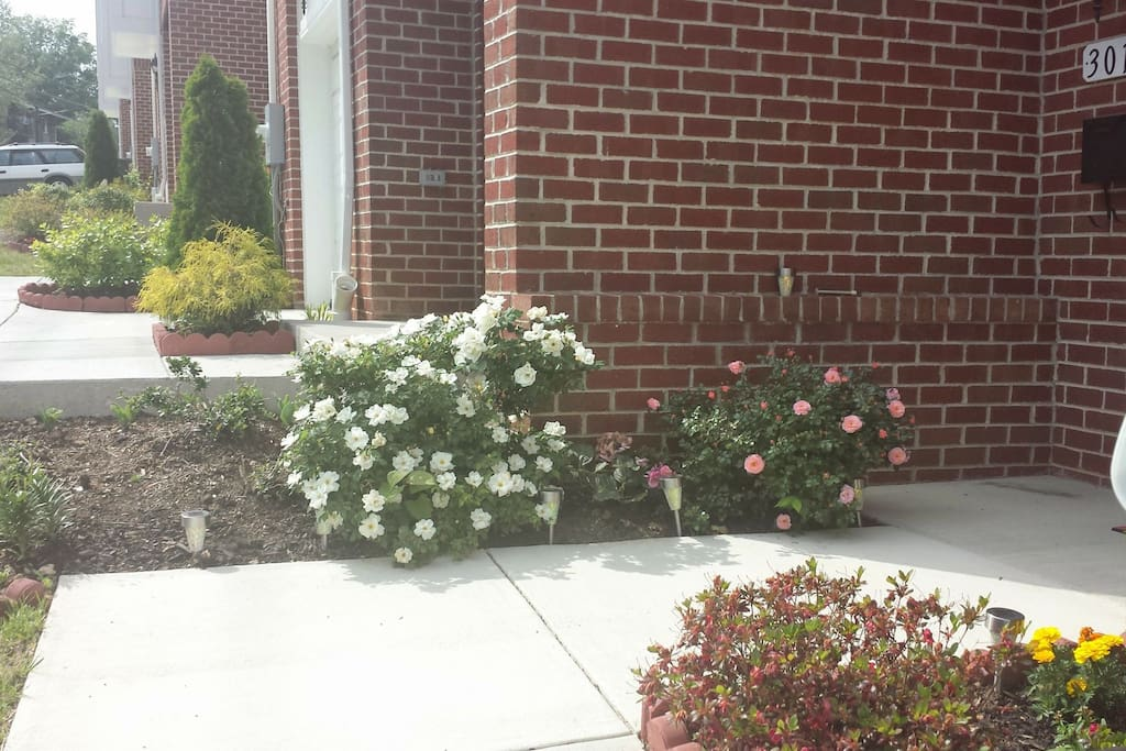 outside of the home. (flowers and plants much bigger now)