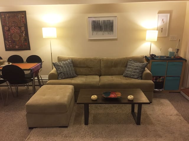 1 Bed Apartment in the Heart of Beautiful Back Bay