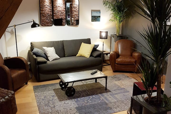 3* Appart de charme 80m² centre Dijon avec garage