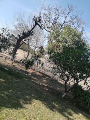 Thokar niaz baig raiwind road