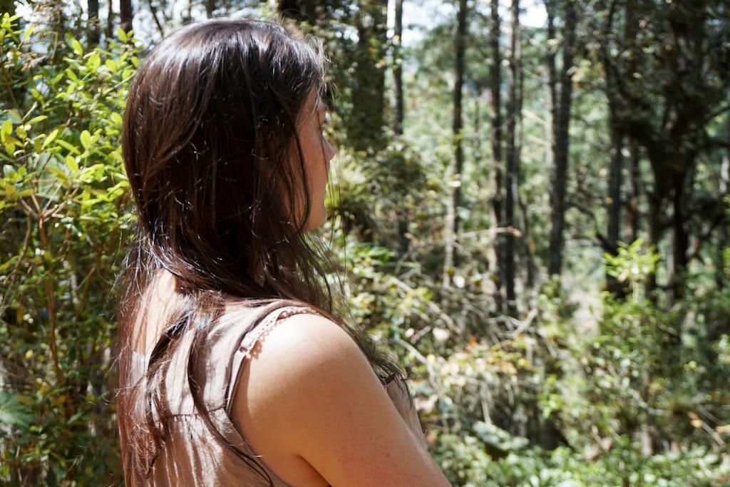Zona de acampar al aire libre a tan sólo 15 minutos del centro de San Cristobal de las Casas.