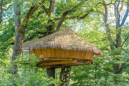 Cabane Spa Murmures pour 2 personnes - Chassey-lès-Montbozon - Dům na stromě