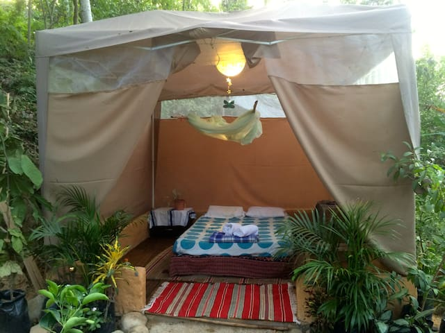 ChAmbre hawaian style - Palomino - Casa