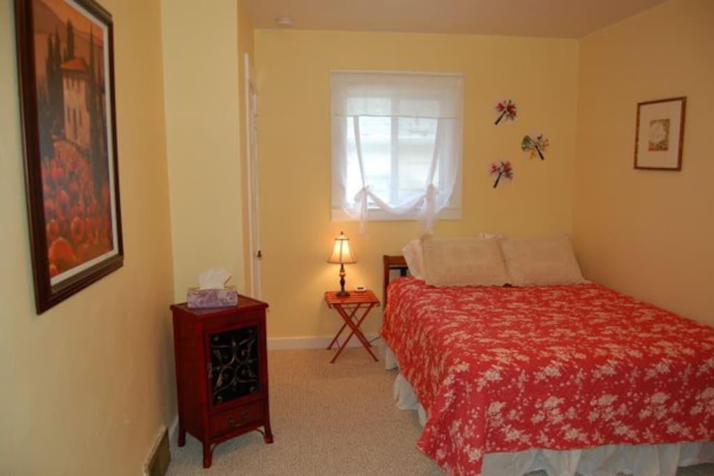 Bedroom with Queen mattress