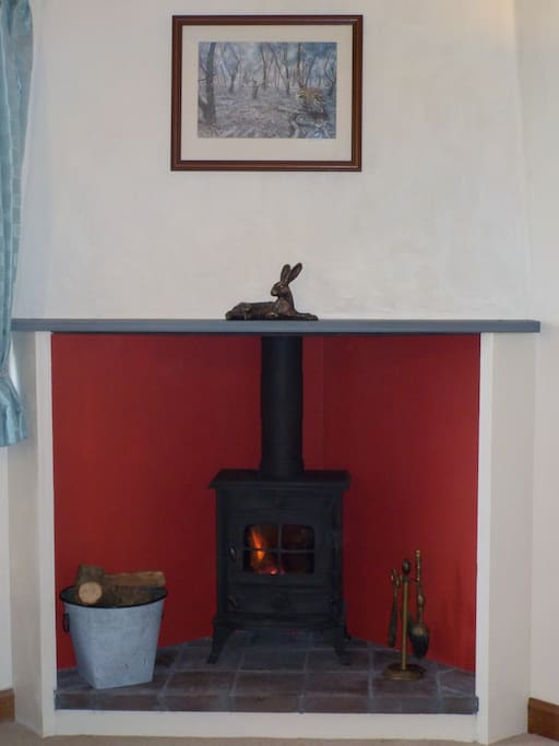Log burner - for anyone bringing children, a fireguard is available.