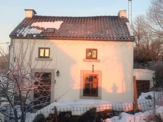 Maison 4 façades - Braives - Hus