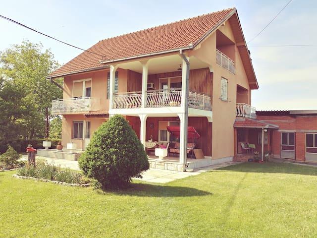 Domaćinstvo Nikolić Petnica Studio