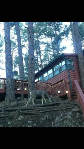 RED HART 2/2 Cabin with Pool Table - Ruidoso