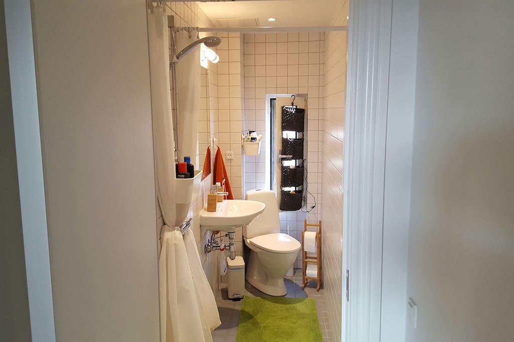 The bathroom/toilet