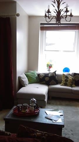 Cosy spacious flat opposite sea - Saint Leonards - Lägenhet