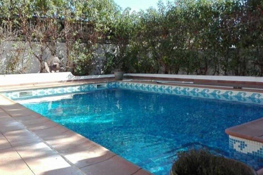 piscine en libre acces