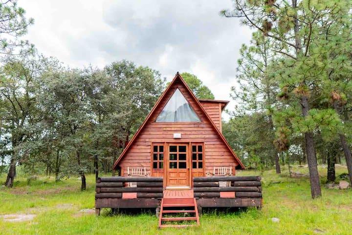 Acogedora cabaña en Bosques de Llano Grande