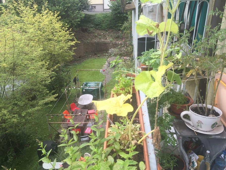 Der blühende Garten
