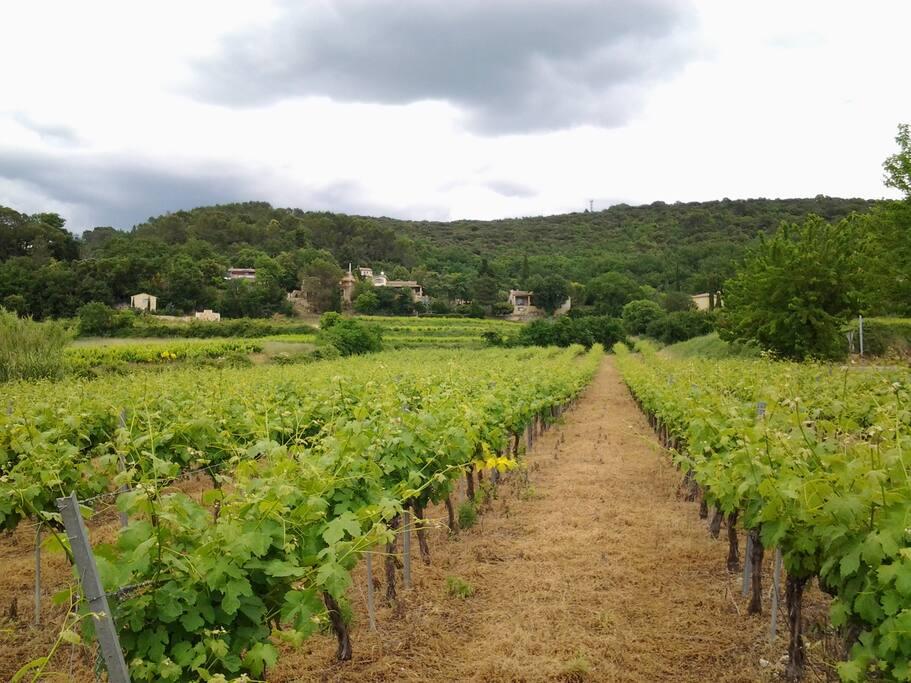 Le hameau de ROMAN et la maison