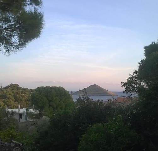View 1 from veranda