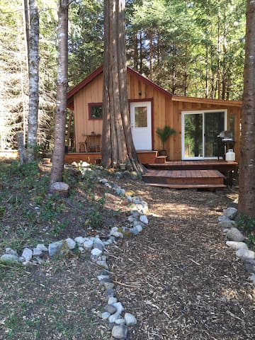StarGazing Cabin under the Trees~ - Saltspring island  - Cabin