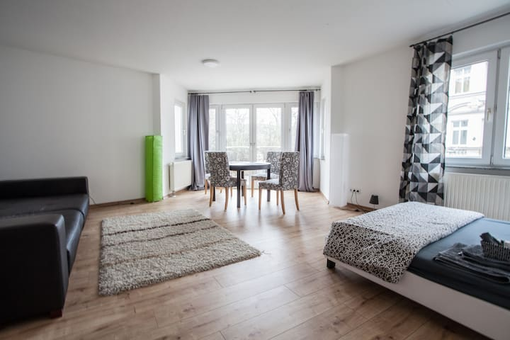 Big central apartment & garage - Leipzig - Appartement