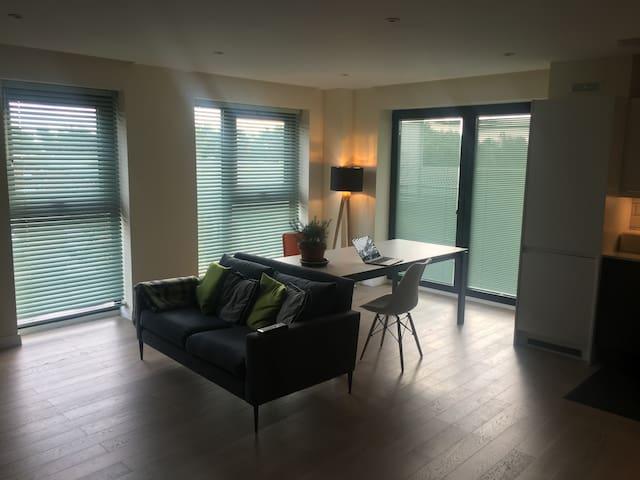 Stylish new build apartment Twickenham