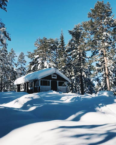 Cabin w/ hiking and crosscountryskiing